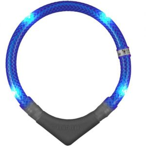 Leutchie blue light up collar