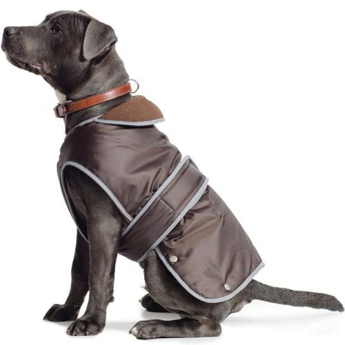 Chocolate Dog Coat