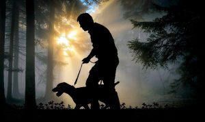Person walking in the dark, with a dog