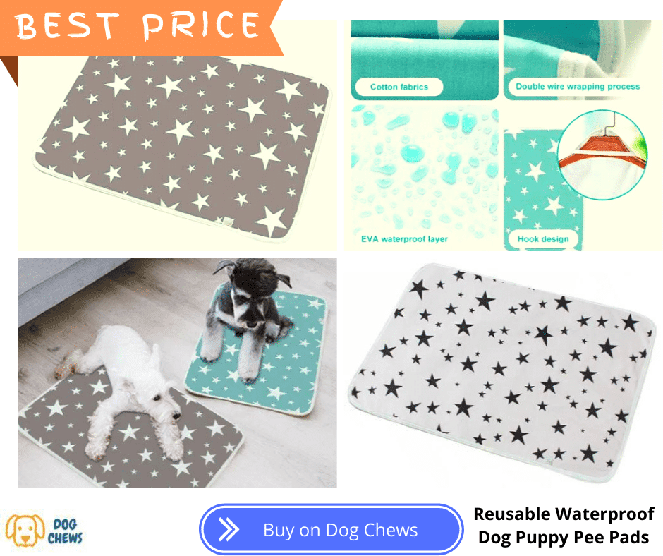Reusable Waterproof Dog Puppy Pee Pads, with two dogs