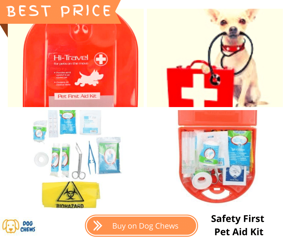First Aid Dog Kit with a dog