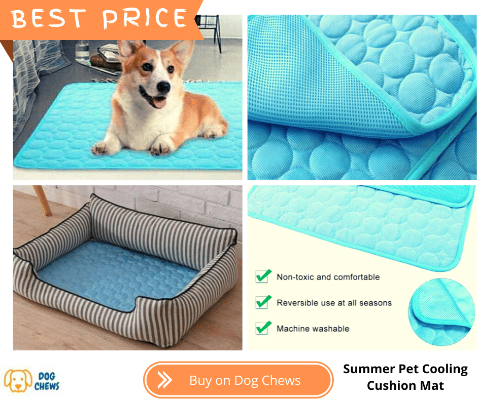 Summer Pet Cooling Cushion Mat, and a dog laying down