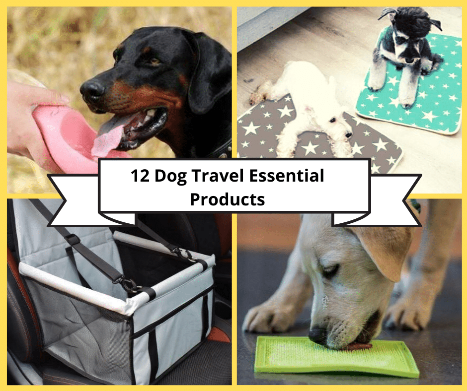 12 Travel Essential Products