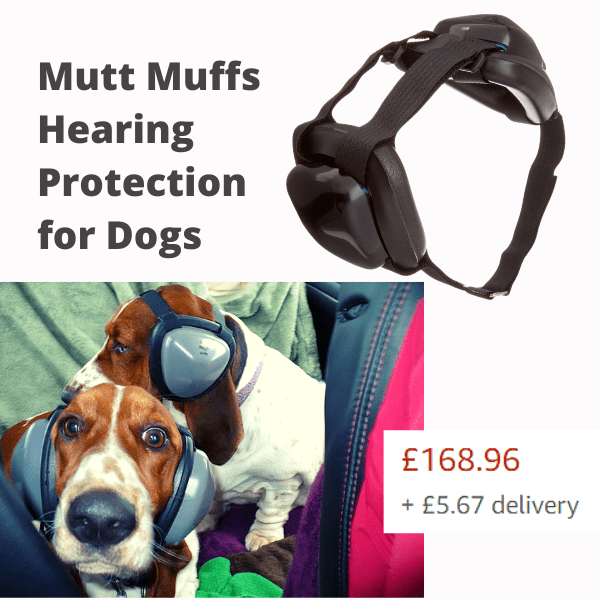 Dog ear muffs and dogs wearing them