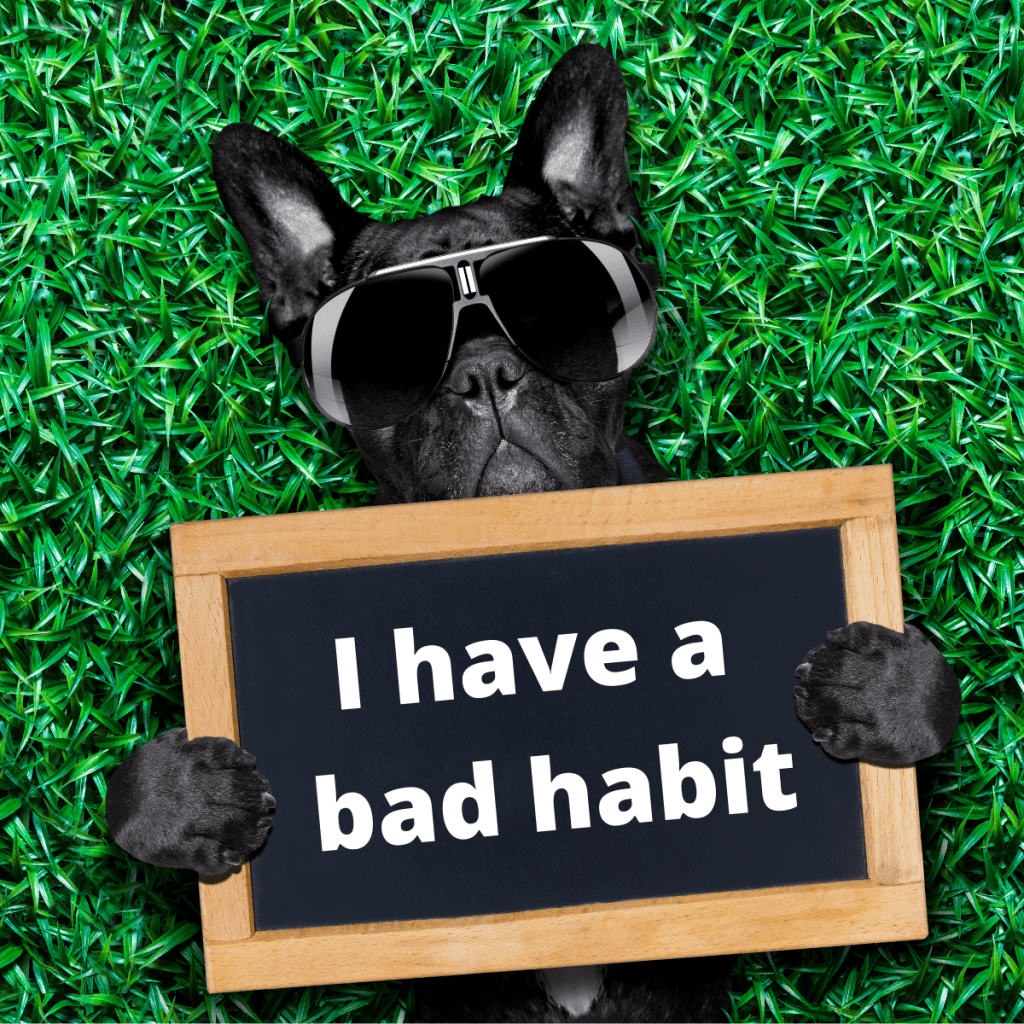 dog holding a sign saying I have a bad habit on the grass