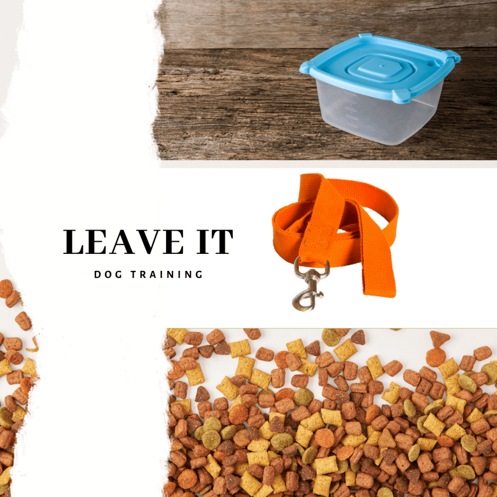 Tupperware box, dog lead and treats