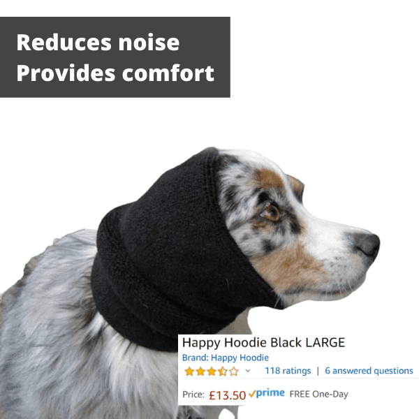 a dog wearing a snood over ears