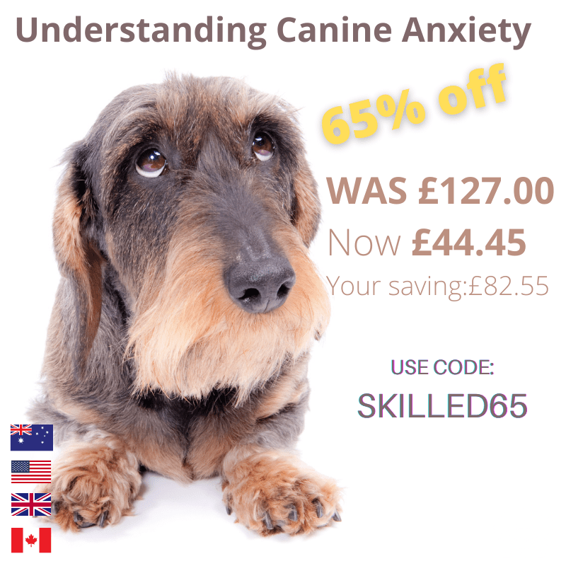 Canine Anxiety course