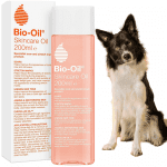 Bio-Oil and a dog looking at the camera on white background