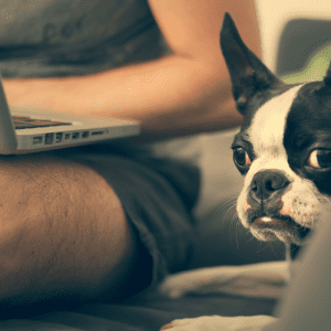 owner with dog, learning on a laptop