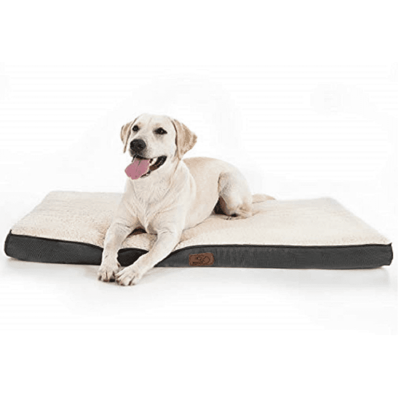 Dog topper with a Labrador laying on top