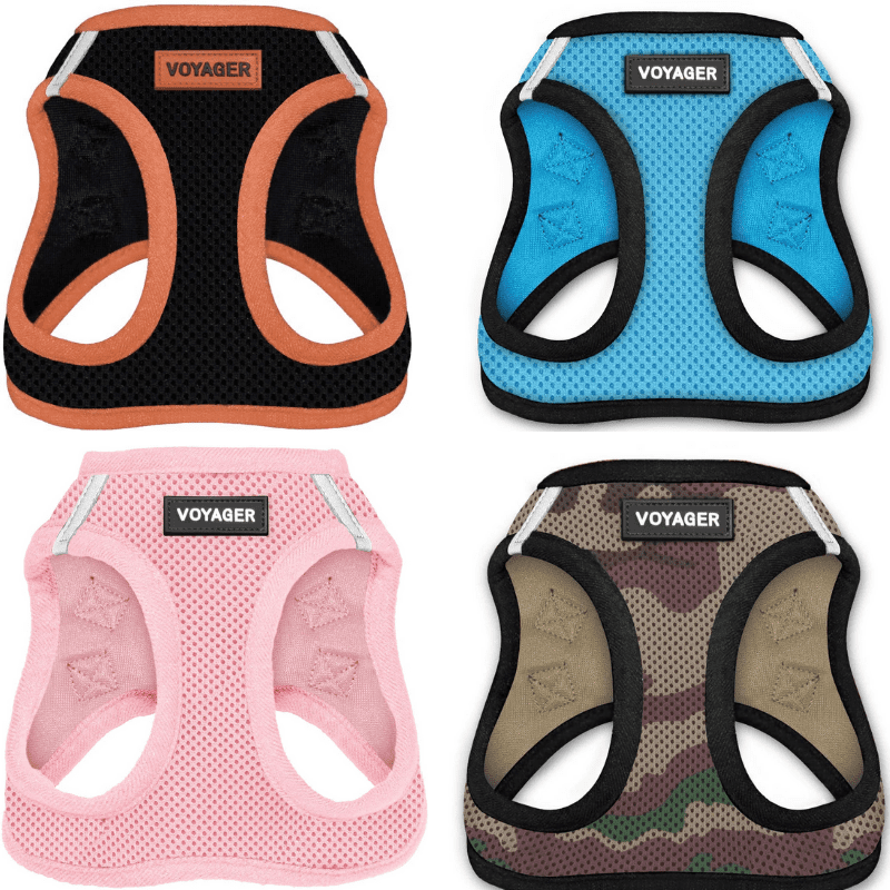 Four harnesses next to each other