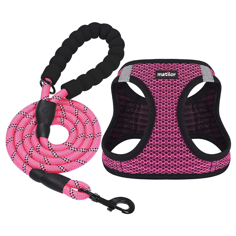 Pink harnesses and leash