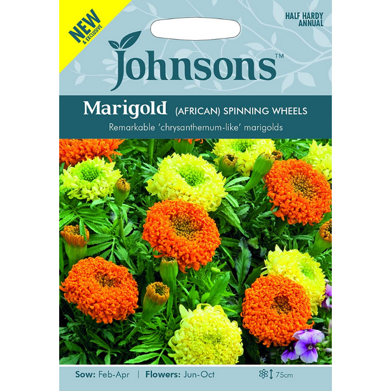 Marigold Seeds in a pack