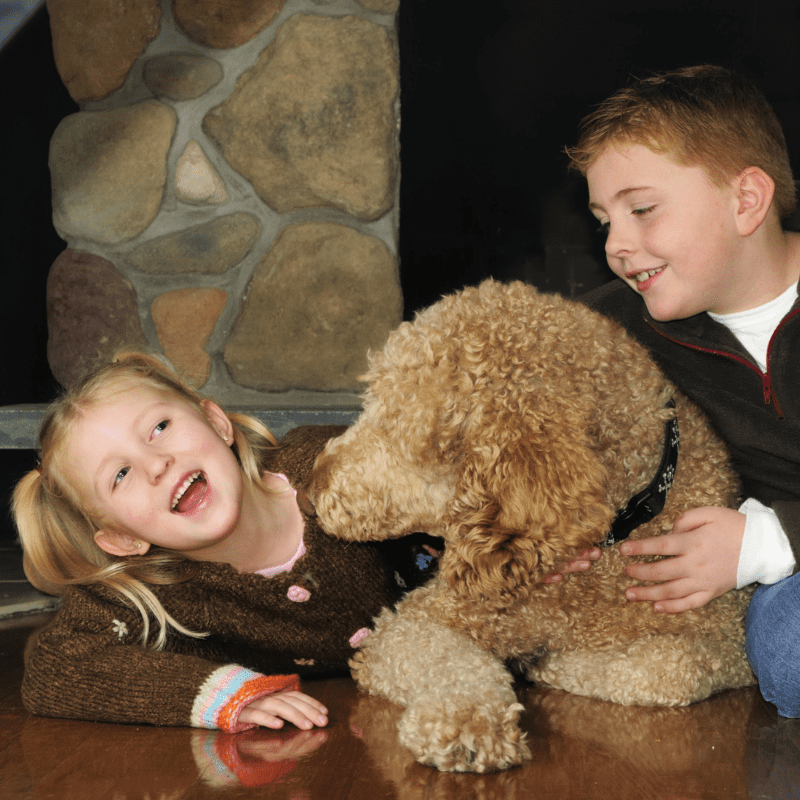 A poodle and two children
