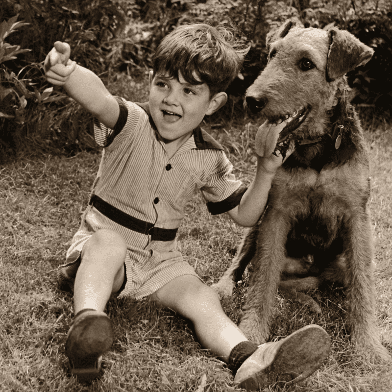 Old picture - A boy and an Airedale Terrier happily sitting on the grass together.
