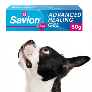 Tube of savlon and a black and white dog looking up at it